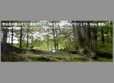 スクリーンショット(2011-11-29 0.56.39)