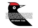 shirakami_k