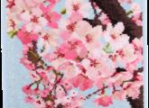 sakura2015_japan